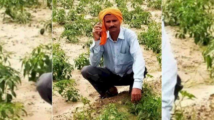 किसान कॉल से कृषि समस्या का हो रहा समाधान, बढ़ रहा उत्पादन